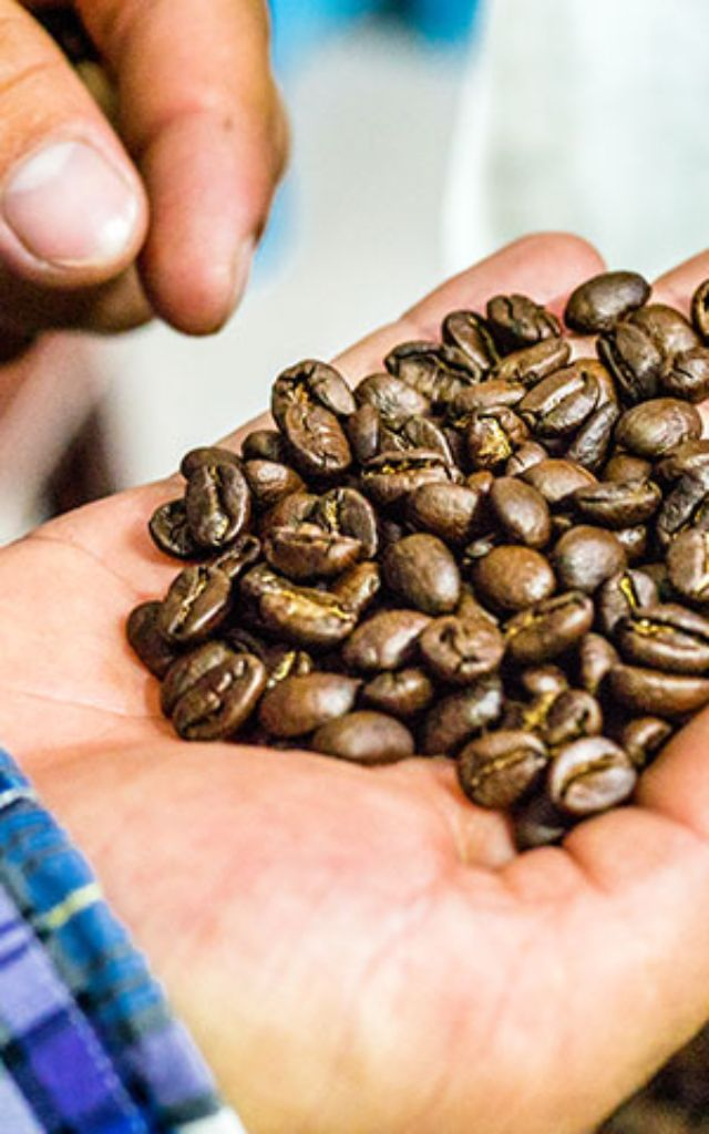 Coffee created through precision and passion