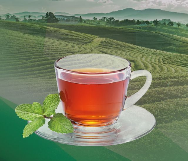 Tea - UK's favourite drink